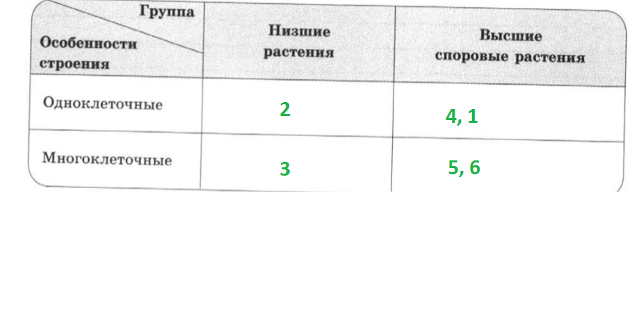 22_1_гот.png