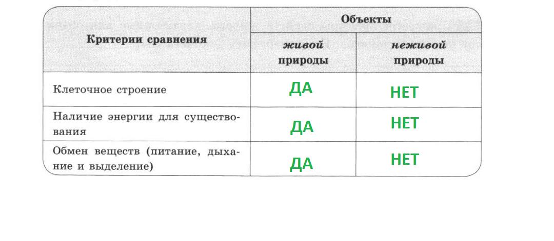 6_ЗАП_ЗЕЛ.png