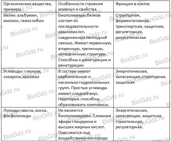 stroenie-i-funkcii-oraganicheskih-veschestv-kletki